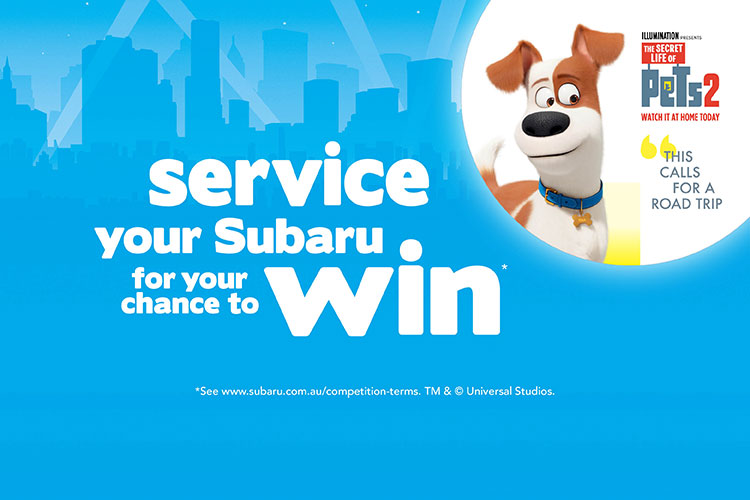 Complete a service this summer to be in the draw to win a trip to Universal Studios, Hollywood*. Plus great monthly prizes to be won*. Terms and conditions apply.